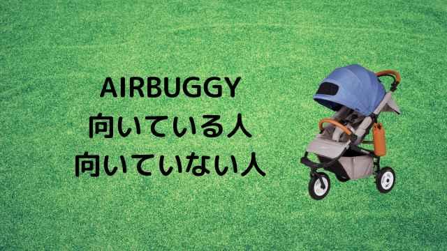 エアバギー